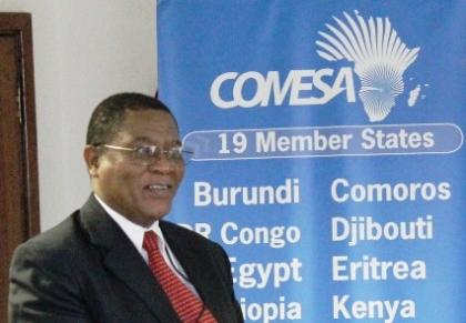 COMESA secretary general Sindiso Ngwenya