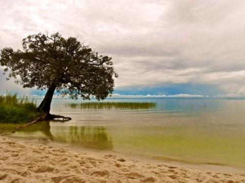 Lake Bangweulu, Zambia