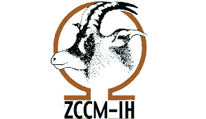 ZCCM Investment Holdings Plc