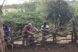 Grassroots Trust engages with land owners, often through Traditional Authorities or local groups to stimulate discussion over natural resource and environmental management.
