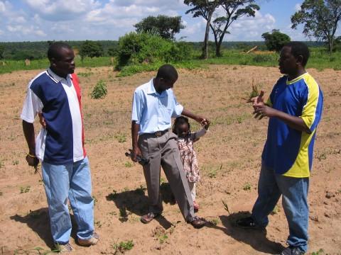 Land Ndola