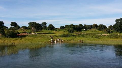 chilubi island -