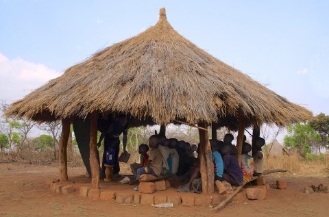 grass thatched schools
