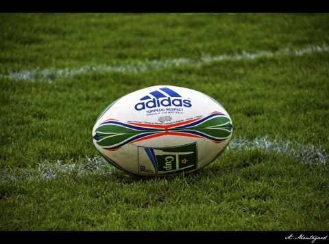 Rugby Ball Adidas