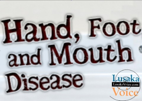 Foot and mouth disease - Screen Capture by lusakavoice.com