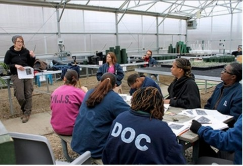 Kerry Wright, deputy director of Cook County Jail's Urban Farming Initiative, leads a lecture with inmates on plant health. (Homa Bash:MEDILL)