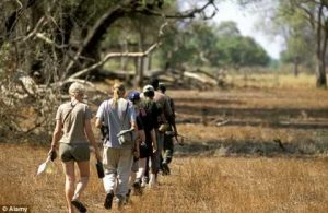 A general file photo of a walking safari in the South Luangwa National Park. The couple, who live in Monte Carlo, are seeking compensation in excess of £300,000