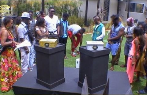 Big Brother hotshots : The Die Is Rolled