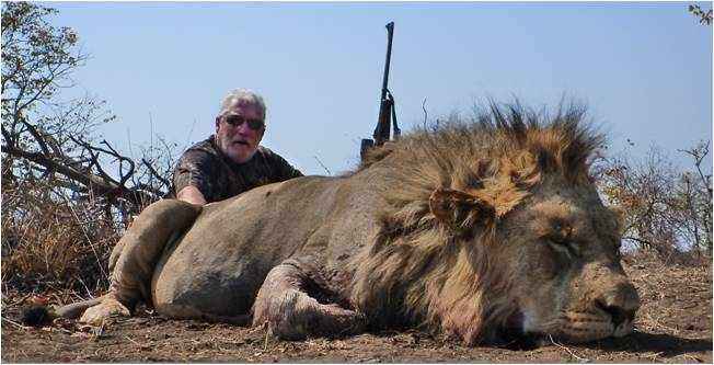 Lion Hunting | Shaun Buffee Safaris www.shaunbuffeesafaris.com