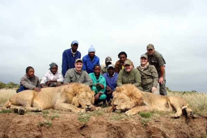 South Africa Lion Hunting | Client Review gothunts.com