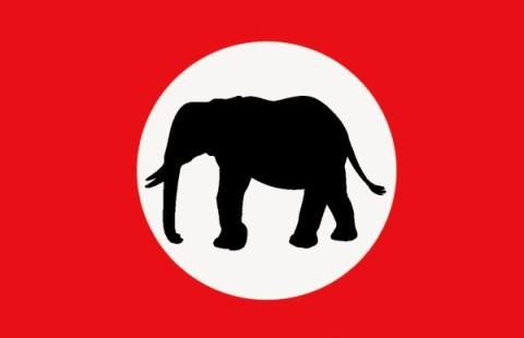 barotseland royal flag