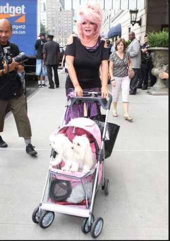 Mrs. Crouch with her two Maltese dogs. In 2008 and 2009, she rented adjacent rooms in a hotel, one for herself and another for the dogs and her clothes