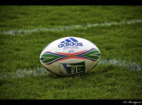 Rugby Ball Adidas
