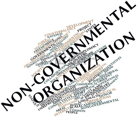 NGOs and Non-profits