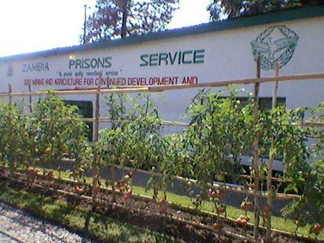 Zambia Prisons Service