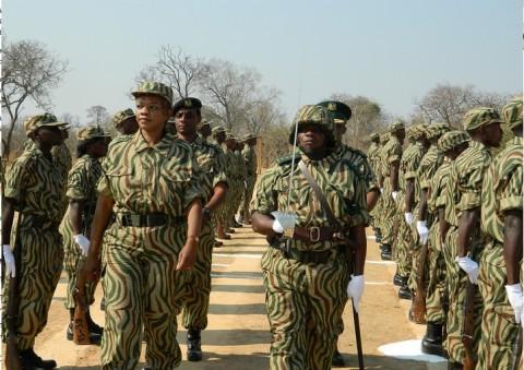 Zambia Wildlife Authority