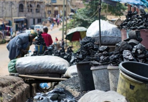 charcoal traders