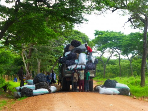 Charcoal trucks are a common sight within the project zone for the Lower Zambezi REDD+ Project. Over 50% of Lusaka's calculated charcoal supply is estimated to come through Chongwe District, near to the project area