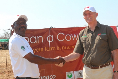 1 'Loan a Cow' beneficiary Chibombo farmer Gillard Shakete shaking hands with ZANACO CEO Bruce Dick