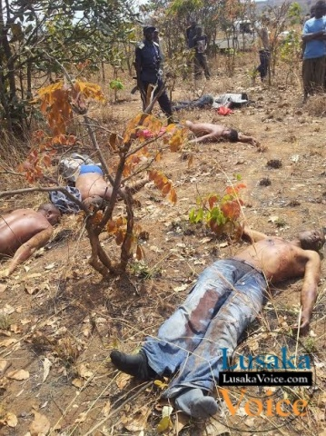 A combined team of the Zambia and Tanzanian police officers picking dead bodies of 7 men suspected to be Tanzanians found dumped in a bush in Yolo Village, 500 metres from the Tanzanian / Zambia border on Friday last week. Picture by Jonathan Mukuka
