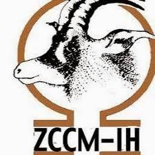 ZCCM-IH