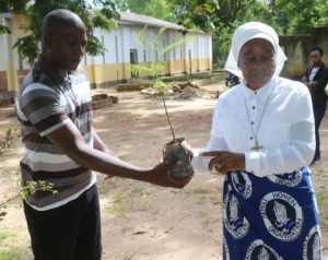 Chongwe Paris priest Fr Gabriel Mwanamwalye and Chieftness Nkomesha Mukambo II admiring a tree before plantation