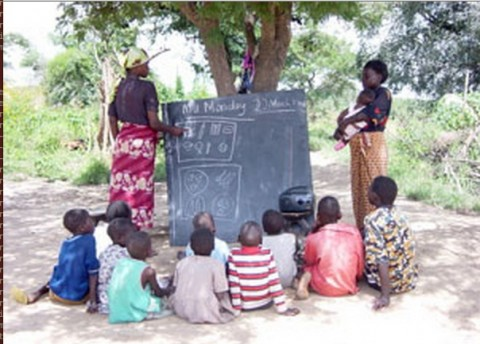 pupils learning under trees