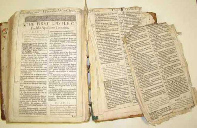 Bible in Toilet